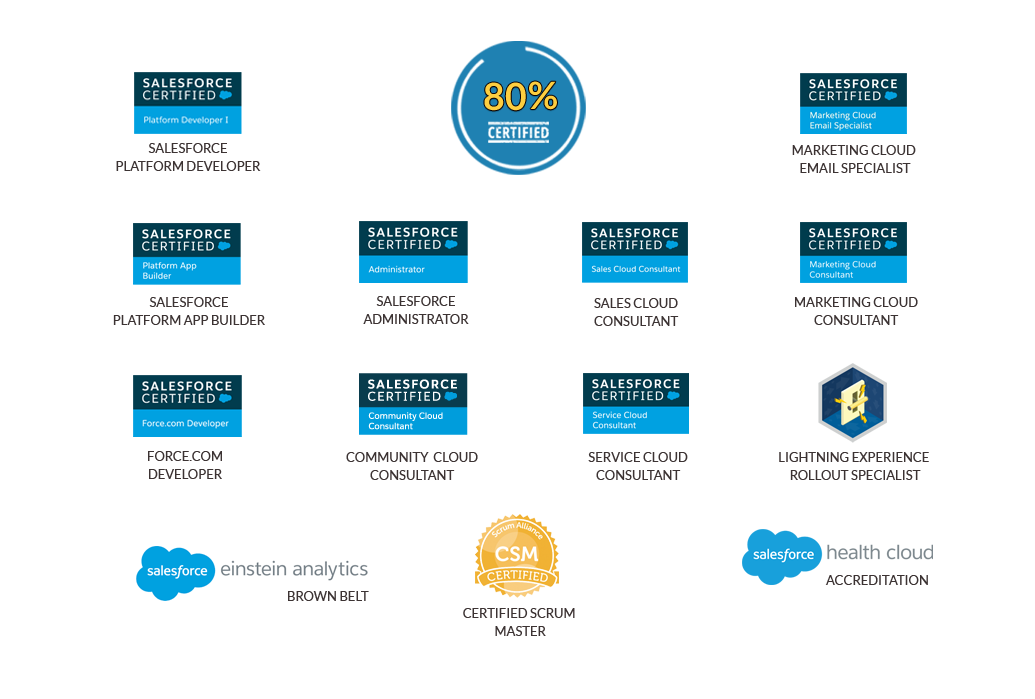 We Are A Team Of Salesforce Certified Professionals